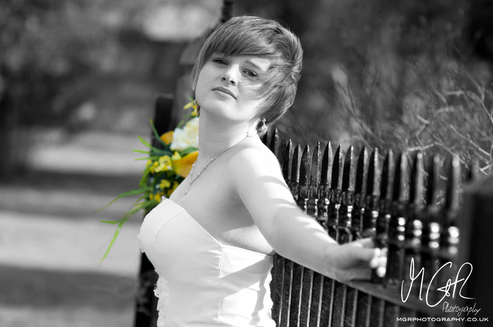 2011 Wedding Portfolio